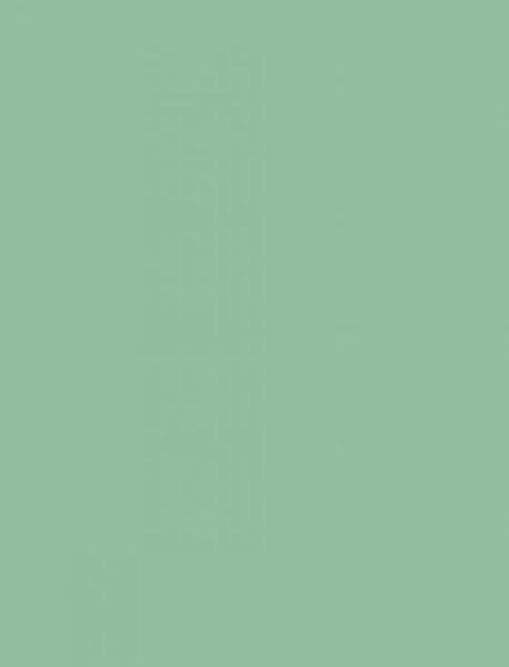folia Fotokarton, (B)500 x (H)700 mm, 300 g/qm, mint